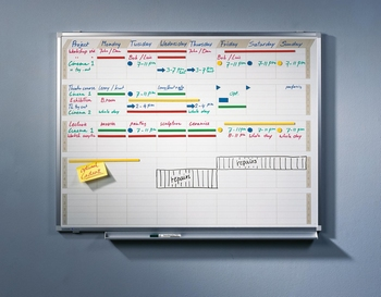 PROFESSIONAL activiteitenplanner 90x120cm