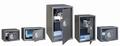 Phoenix Meubelkluis VELA Home/Office SS0804E inhoud 51 liter